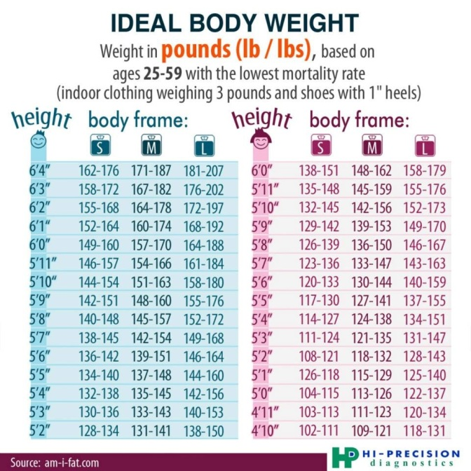 body fat percentage calculator ** recommended for you